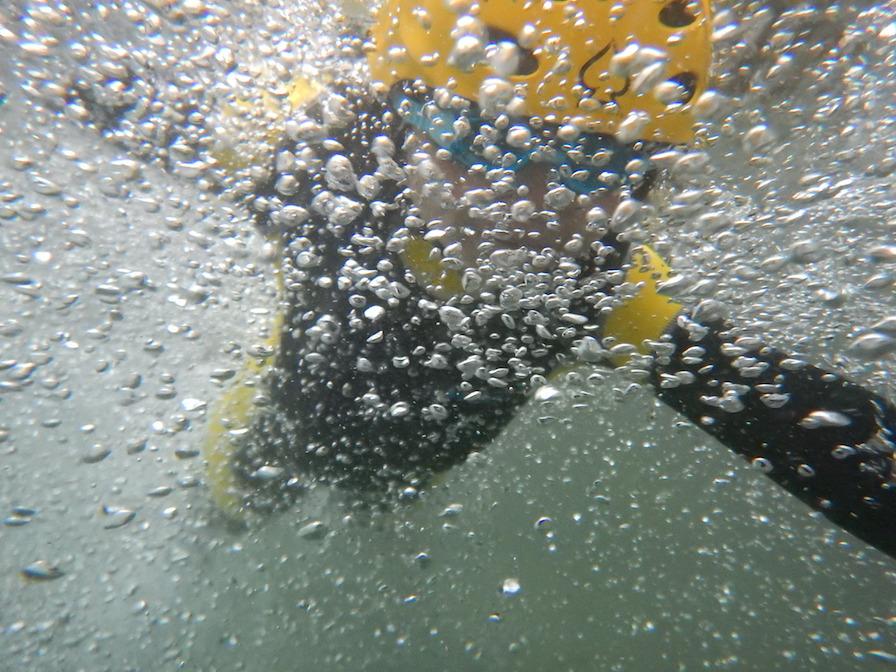 リバートレッキング シャワークライミング キャニオニング 丹沢 西丹沢 神奈川 親子で冒険